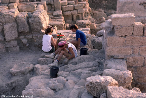 Archaeology most useful majors