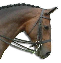 bridle-double-2